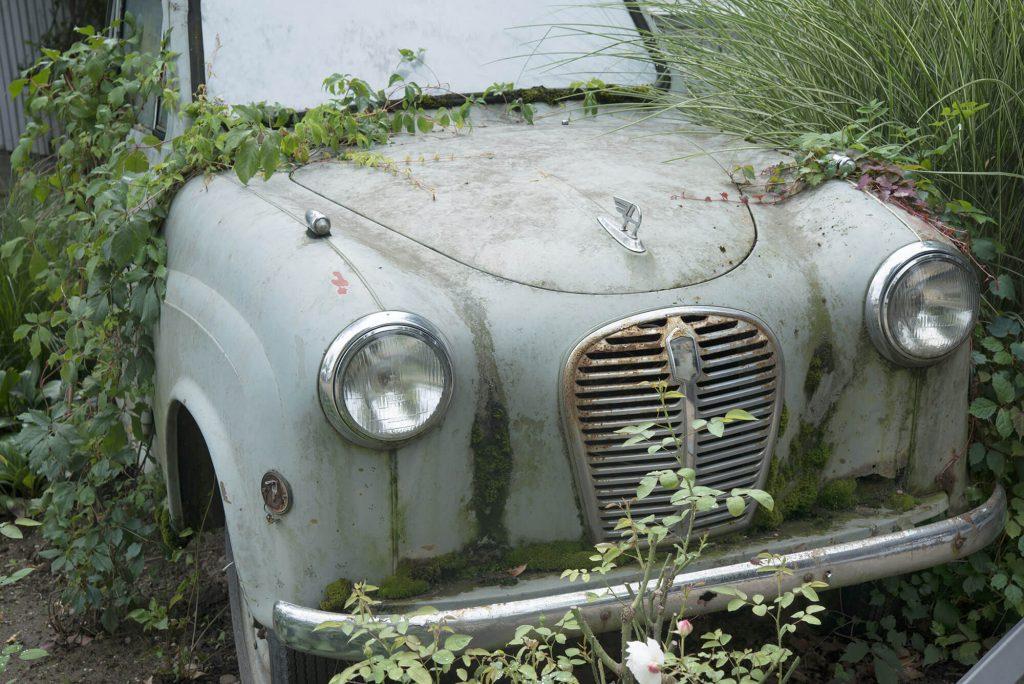 Vergessener Oldtimer umgeben von Vegetation